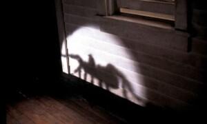 Арахнофобия — боязнь пауков, причины и лечение.