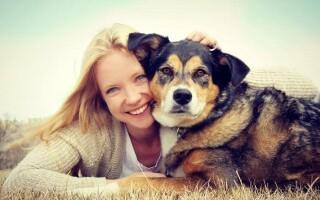 Кинофобия — боязнь собак — причины, симптомы и лечение.