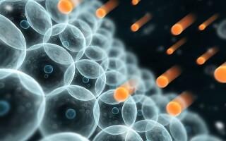 Окислительный стресс: разрушение клеток и старение